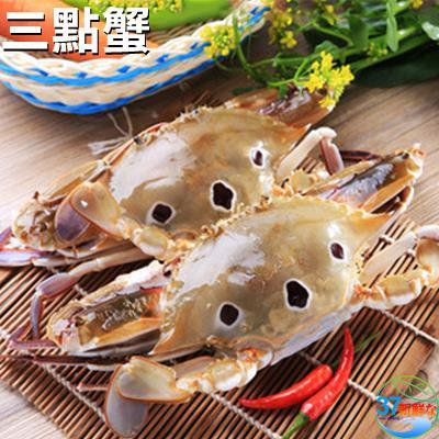 三點蟹 3隻 包