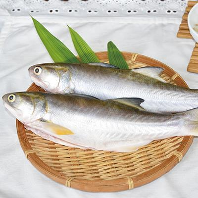 生鮮午仔魚225g