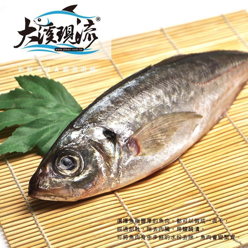 大溪漁港竹筴魚  四破魚  硬尾仔   中尾 300g±10%_尾  ~大溪現流~