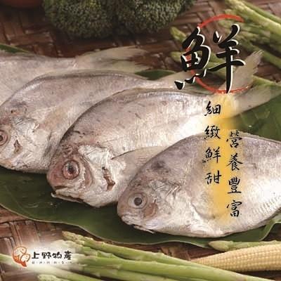【冷凍店取-上野物產】肉鯽魚(8隻)
