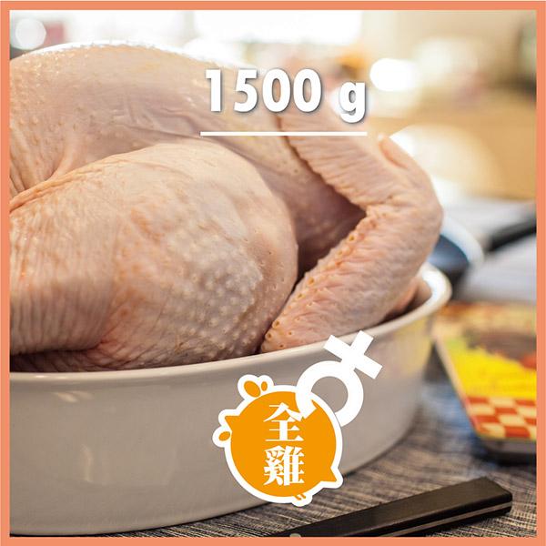 ~元榆牧場~自然放牧黑羽雞 ~ 安全無毒母雞 ~ 全雞1.5kg ~ 拜拜