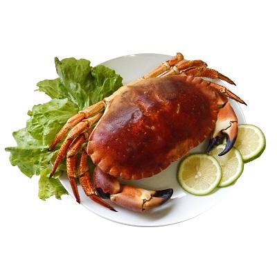 【冷凍店取-上野物產】英國巨碩德文郡蟹(800g/1入)