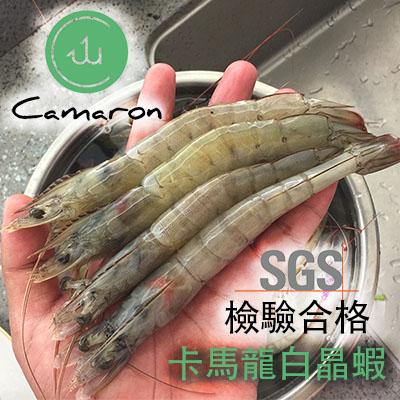 【冷凍店取-卡馬龍】卡馬龍無毒白晶蝦(30-40隻)