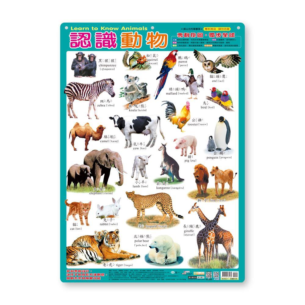 幼儿学习挂图:认识动物 B2462-1
