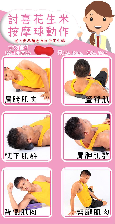 討喜花生米按摩球,高硬度,適合局部深層按摩,花生造型,可按摩豎脊肌及胸脊