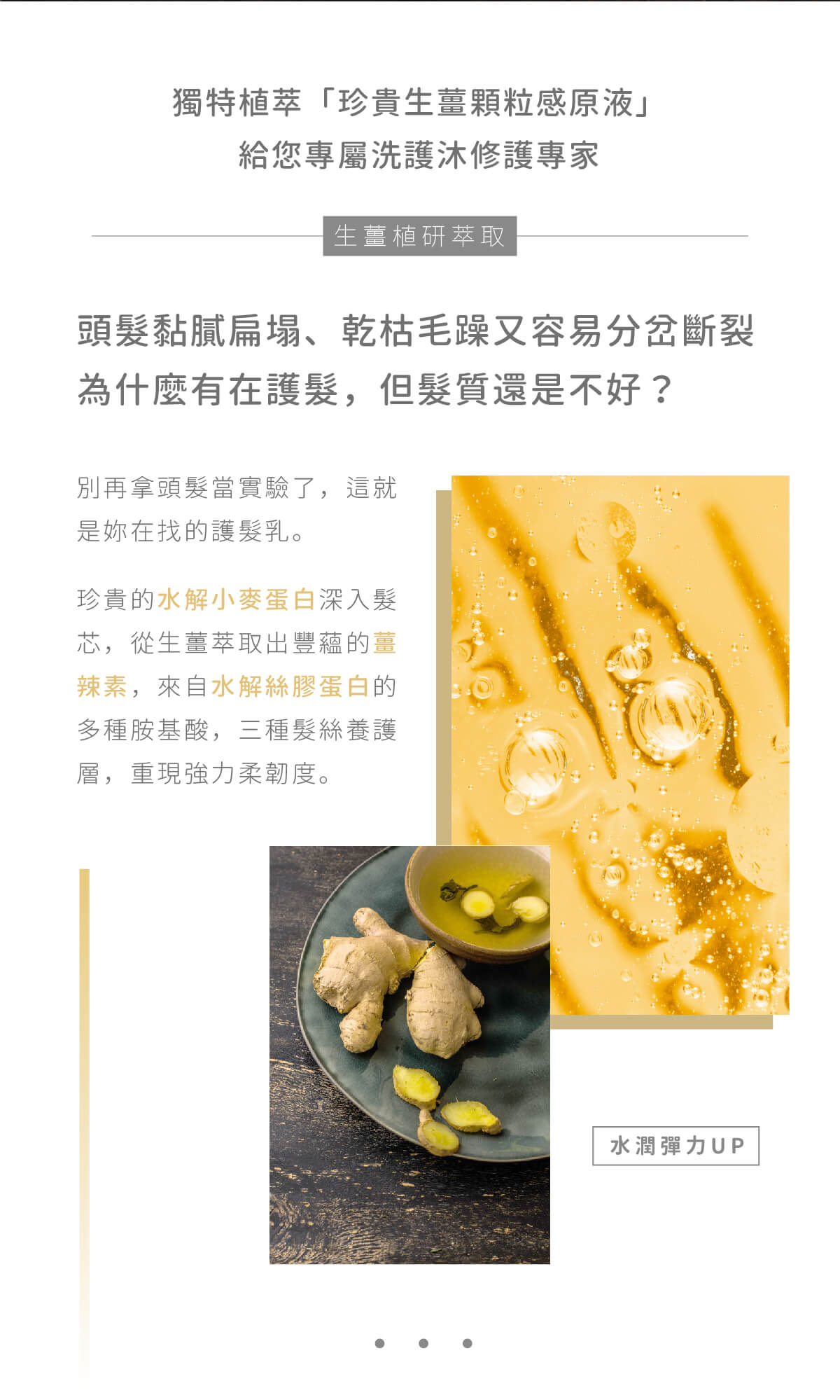 [ 白家綺 代言 ] KAFEN 生薑韌髮頭皮洗髮精500ml/ 生薑粒子護髮素500ml/ 生薑美肌沐浴乳500ml